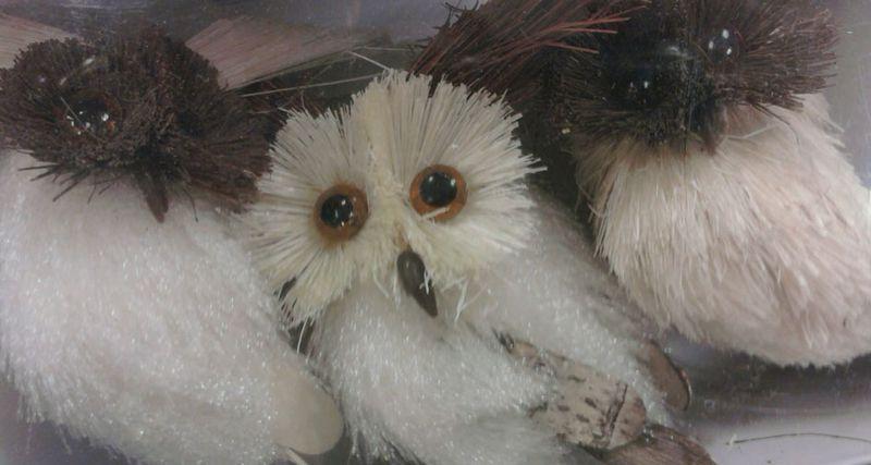 OWLS-2